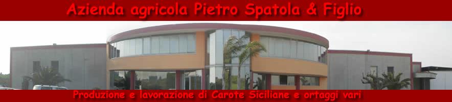 Pietro Spatola